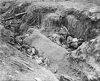 Flies and maggots on dead German soldiers at Somme 1916
