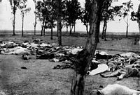 Armenians killed during the Armenian Genocide. Image taken from Ambassador Morgenthau's Story, written by Henry Morgenthau, Sr. and published in 1918.