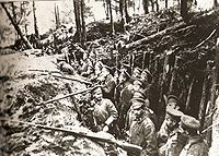 Russian forest trench at the Battle of Sarikamish, 1914–1915