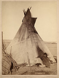 Young Oglala Lakota girl in front of tipi with puppy beside her, probably on or near Pine Ridge Indian Reservation, South Dakota