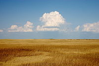 Cumulus clouds hover above a yellowish prairie at Badlands National Park, South Dakota, native lands to the Sioux.