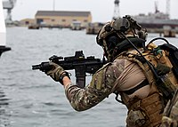 Soldier from the Polish Naval Special Forces Unit, JW GROM