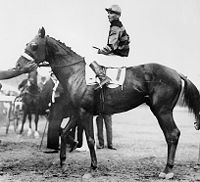 Triple Crown of Thoroughbred Racing (United States)