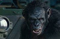 Koba (Planet of the Apes)