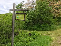 The Mason Street Conservation Area is 12-acre property along the Palmer River, managed by the Rehoboth Land Trust.