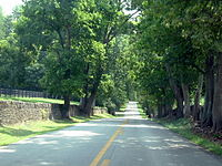 Narrow country roads bounded by stone and wood plank fences are a feature in the Kentucky Bluegrass region