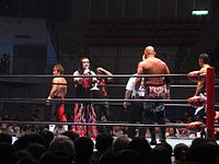 A match of All Japan Pro Wrestling in Taiwan, 2009