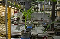 A section of the Corteva Research Facility, an automated greenhouse facility, in Des Moines, Iowa