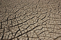 Cracked earth in the Rann of Kutch