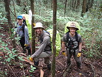 BSAR searchers at Mount Dom Dom.