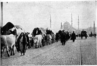 """The loss of almost all Ottoman territories during the late 19th and early 20th centuries, and the establishment of the Republic of Turkey, in 1923, produced waves of Turkish refugees, who were known as """"Muhacirs"""", who fled from hostile regions of the Balkans, the Black Sea, the Aegean islands, the island of Cyprus, the Sanjak of Alexandretta, the Middle East, and the Soviet Union to migrate to Anatolia and Eastern Thrace."""