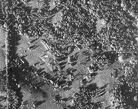 Cuban Missile Crisis a U-2 reconnaissance photograph of Cuba, showing Soviet nuclear missiles, their transports and tents for fueling and maintenance.