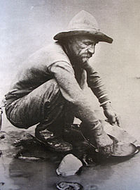 A forty-niner panning for gold in California