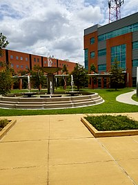 Texas Southern University, located in the Third Ward, is the first public institution of higher education in Houston and the largest HBCU in Texas.<ref>https://hbculifestyle.com/largest-hbcu-by-enrollment/#:~:text=Nestled%20on%20a%20sprawling%20150,diverse%20institutions%20in%20the%20state.</ref><ref>https://abc13.com/barbara-jordan-mickey-leland-michael-strahan-yolanda-adams/6001128/</ref>
