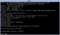 FreeBSD 9.1 startup with console login prompt