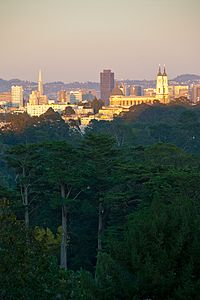 Golden Gate Park as seen from Strawberry Hill