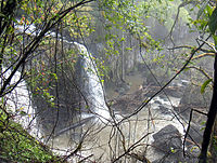 A waterfall at Atherton Tableland, in the Wide Bay–Burnett region