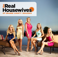 The Real Housewives of Orange County (season 6)