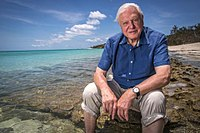 The nature documentaries of David Attenborough, such as The Blue Planet, Planet Earth and Life on Earth, are produced by the BBC Natural History Unit, the largest wildlife documentary production house in the world.