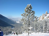 The Palisades area on the north end of the ski area at Red Lodge Mountain Resort