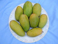 Lucknow is known for its dasheri mangoes, which are exported to many countries
