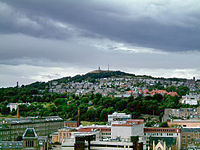 The Dundee Law