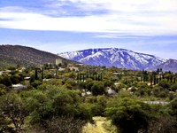 Oracle, Arizona is an unincorporated rural town often called a village in local media