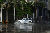 A low lying spot in Brickell floods during exceptionally high tides.