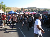 Attendees moshing in a circle pit on the 2010 tour.