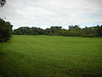 A field north of Fox Den Road, along the Lenape Trail in Middle Run Valley Natural Area
