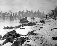 American corpses sprawled on the beach of Tarawa, November 1943