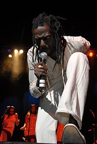 Jamaican musician Buju Banton has attracted criticism over lyrics allegedly supporting the murder of gay men.
