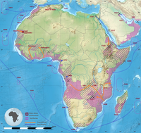 Portuguese expansion in Africa and Middle East between the XIV and XIX century.