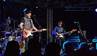 The Richard Thompson Electric Trio (with Michael Jerome and Taras Prodaniuk) at Towersey Festival, 2018