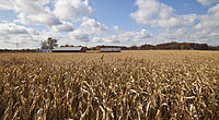 Indiana is the fifth largest corn-producing state in the U.S., with over a billion bushels harvested in 2013.