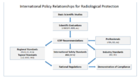 International policy relationships in radiological protection.