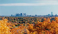 Boston's skyline in the background, with fall foliage in the foreground