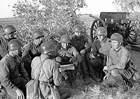 Red Army artillery unit during the Battle of Lake Khasan, 1938