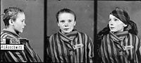 Prisoner identity photograph taken by the German SS of a Polish girl deported to Auschwitz. Approximately 230,000 children were held prisoner, and used in forced labor and medical experiments.