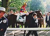 A.P. Indy, Seattle Slew's most successful son at stud