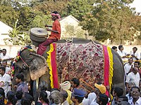 Man riding an elephant in a Pongal Festival Parade in Namakkal