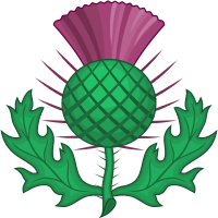 The thistle, the national emblem of Scotland