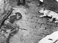 Child who starved to death during the Bengal famine of 1943