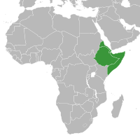 Conflicts in the Horn of Africa