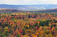Fall foliage seen from Hogback Mountain, Wilmington