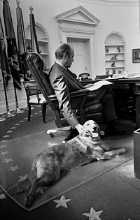 Ford and his golden retriever, Liberty, in the Oval Office, 1974