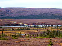 The Susitna River bridge on the Denali Highway is 1036 ft long.