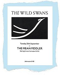The Wild Swans (band)