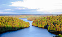 Repovesi National Park in Finland, where there are some 187,888 lakes larger than {{convert|500|m2|sqft|0}}