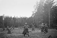 German soldiers surrendering to the Red Army units near Vitovka village, 1941